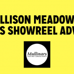 Allison Meadows Gives Showreel Advice